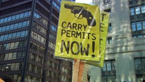Explaining the Success of the Concealed Weapon Carry Movement (and the Failure of ItsOpponents)